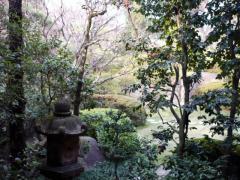 蘇州園 庭園