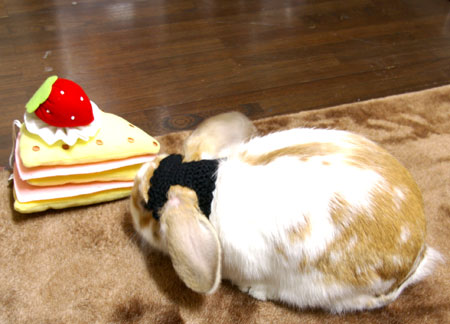 ケーキとメイド