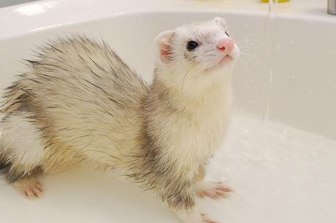 たろうちゃんお風呂写真2