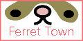 FerretTownへ