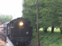 画像 219