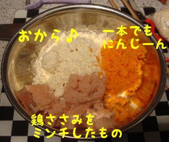 DSC048680055.jpg