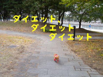 DSCN07490055.jpg