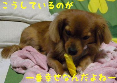 DSCN09360055.jpg
