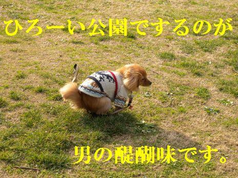 DSCN24010055.jpg