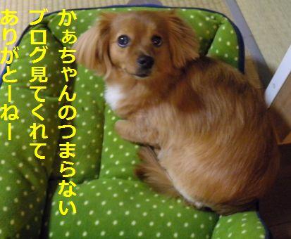 DSCN32180055.jpg