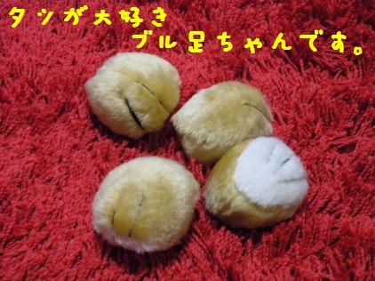 DSCN42680055.jpg