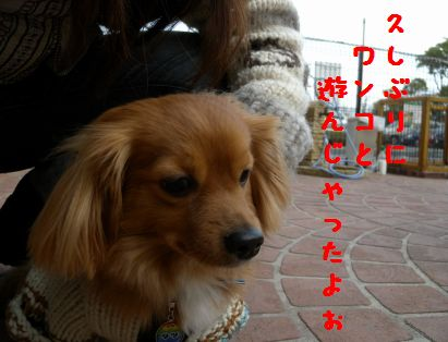 DSCN47230055.jpg