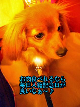DSCN58280055_edited-1.jpg