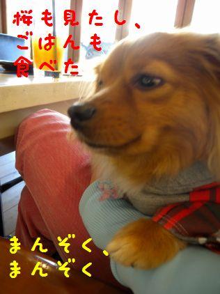DSCN58840055_20090404000220.jpg