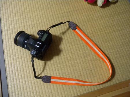 DSCN66160055.jpg