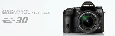 P4041833(1).jpg