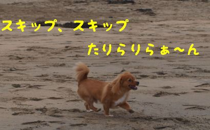 P9145385(1)0055.jpg
