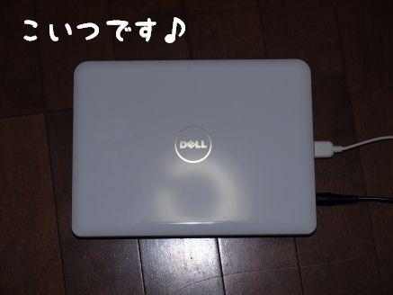 PB1174340055.jpg