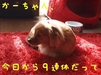 PC2779430055.jpg