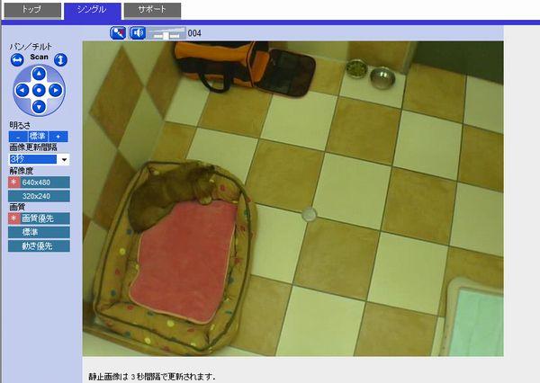 tatsucamera5.jpg