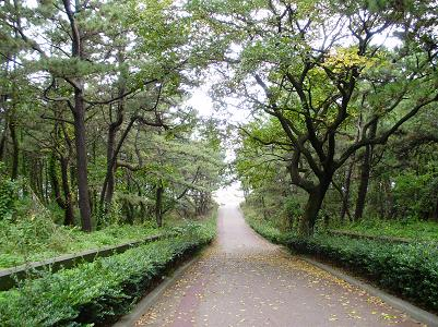 201028公園