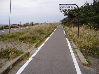 201028サイクリングロード