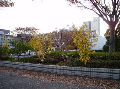 201209NHKホール付近