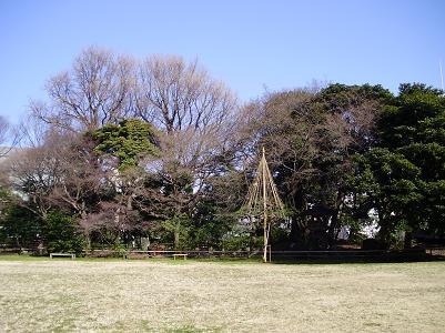 090317庭園