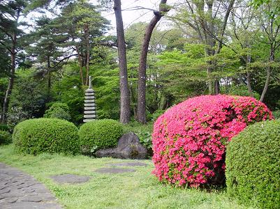 090416大宮公園庭園