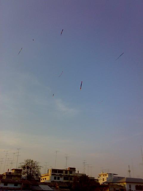 タイ 凧揚げ01