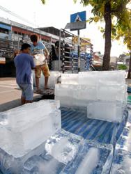 水かけ用の氷!