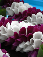 ランの花びらを使用