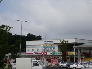 IMGP0843.jpg