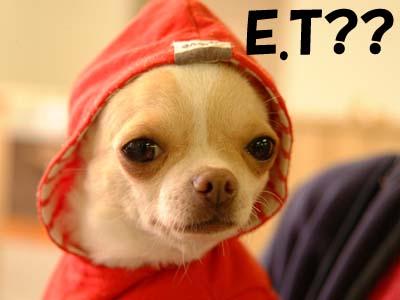 ET_20090220180323.jpg