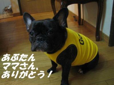 2009年8月2日小姫