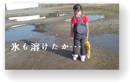 20080312082645.jpg