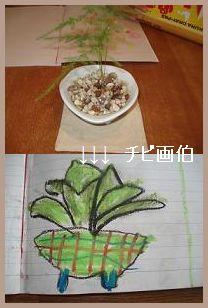 植物 by ちび