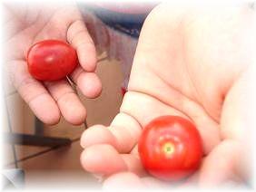 トマト初収穫♪