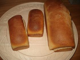 プリン食パン