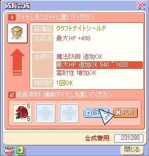 20061125155259.jpg