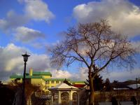 旧領事館の庭
