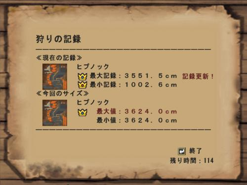 mhf_20090401_174140_328.jpg