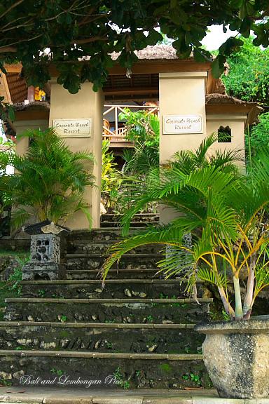 Coconuts Beach Resort2