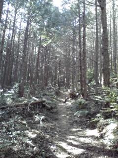 20080308b.jpg