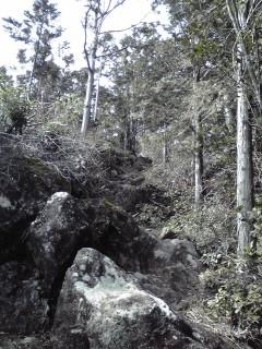 20080316b.jpg