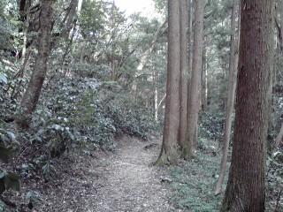 20080316i.jpg