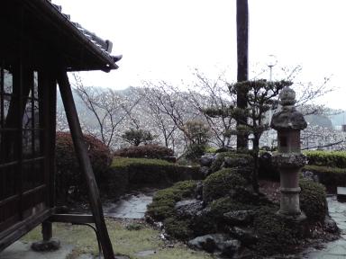 20080331b.jpg