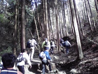 20080414b.jpg