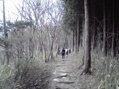 20080414c.jpg