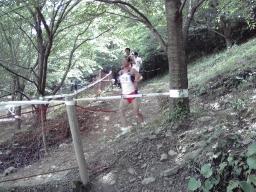 20080608d.jpg