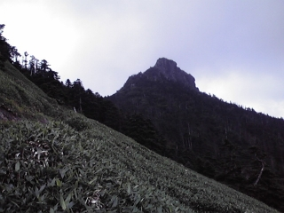20080816e.jpg