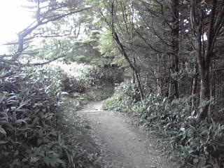 20080816n.jpg