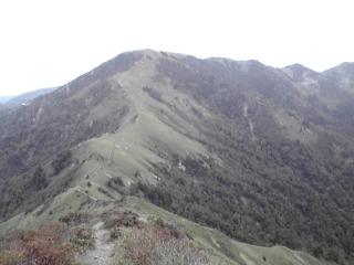 20080928e.jpg