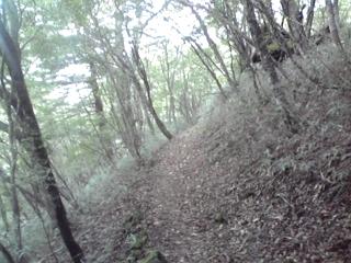 20080928f.jpg